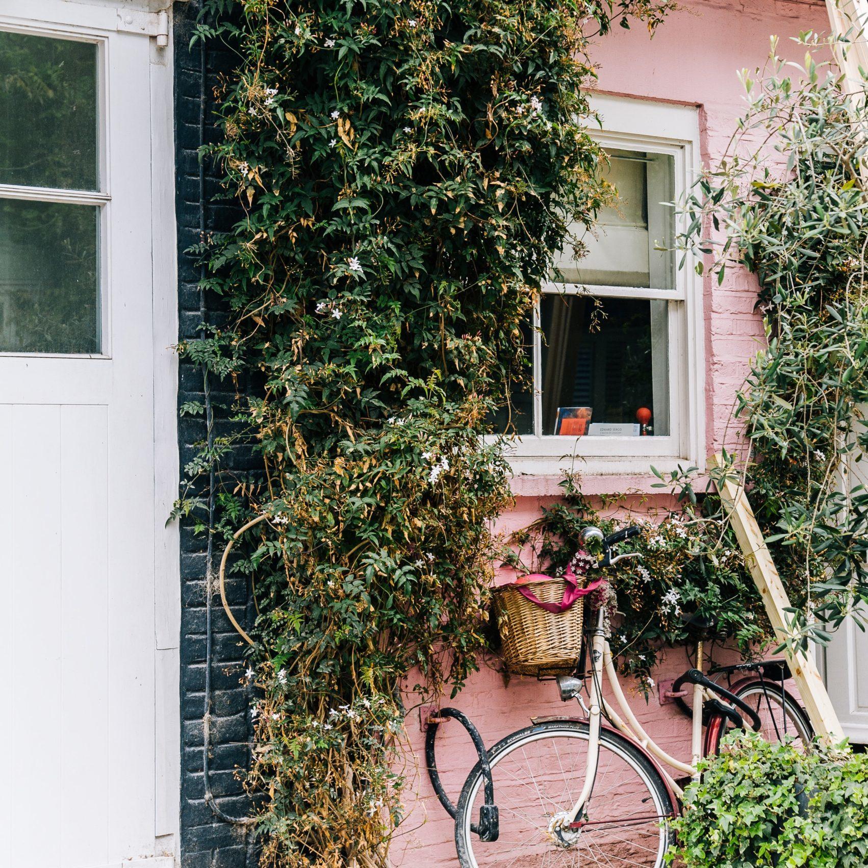 https://rozetluistervoer.nl/podcast-categorie/huis-en-tuin/
